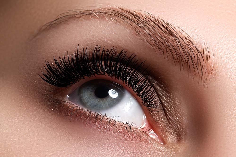 Woman's eye, eyelashes, and eyebrow looking upward